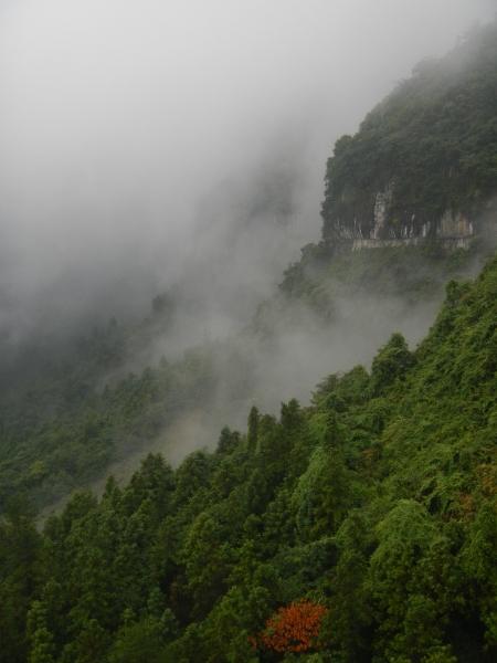 DSCN3254-20130824 Tianmenshan mountainside
