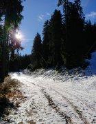 Snowy trails, Pirin Mountains