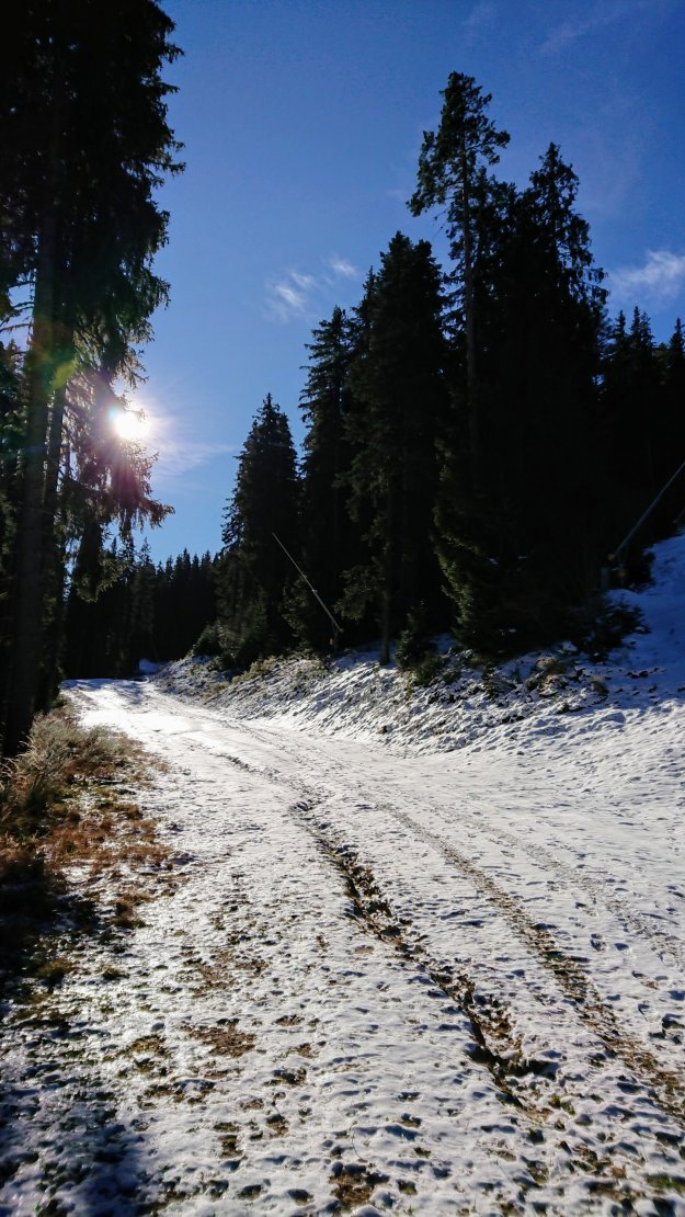 Snowy trails, Pirin Mountains